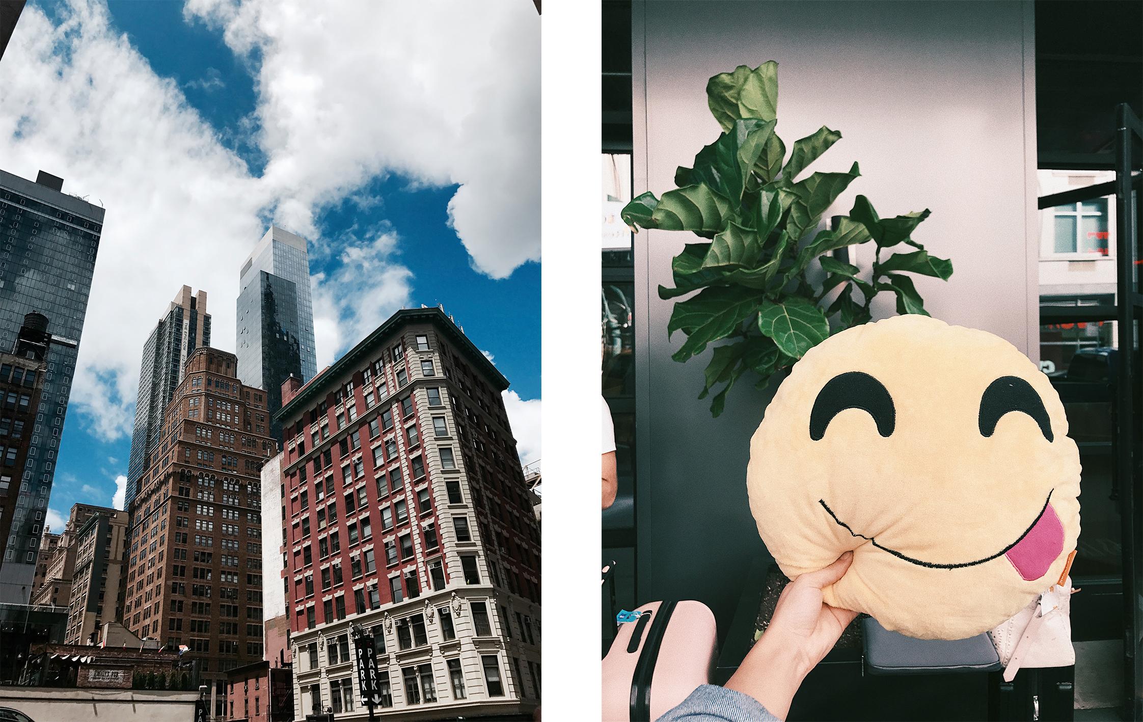 newyork 8