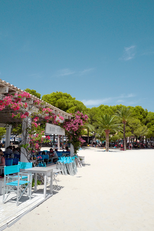 beach palma bianca blogg paradise